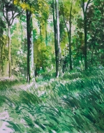 Cette image a un attribut alt vide; le nom du fichier est stefano-console-aquarelle-bois-colfontaine.jpg